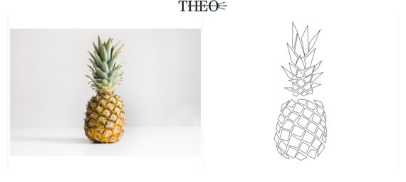 Texture Ananas