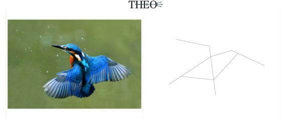 schematized kingfisher