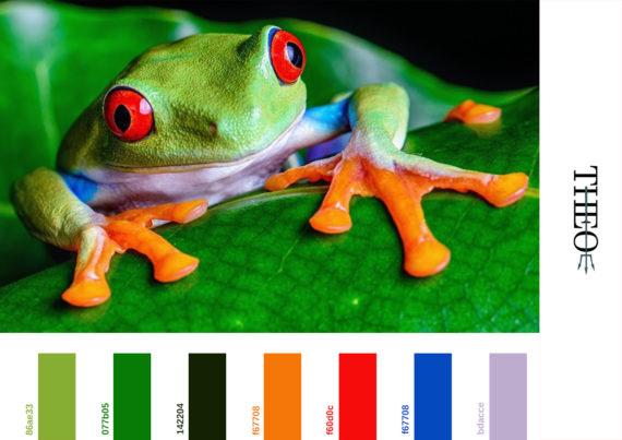 Pantone tree frog