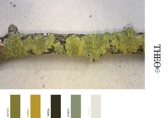 Lichens pantone